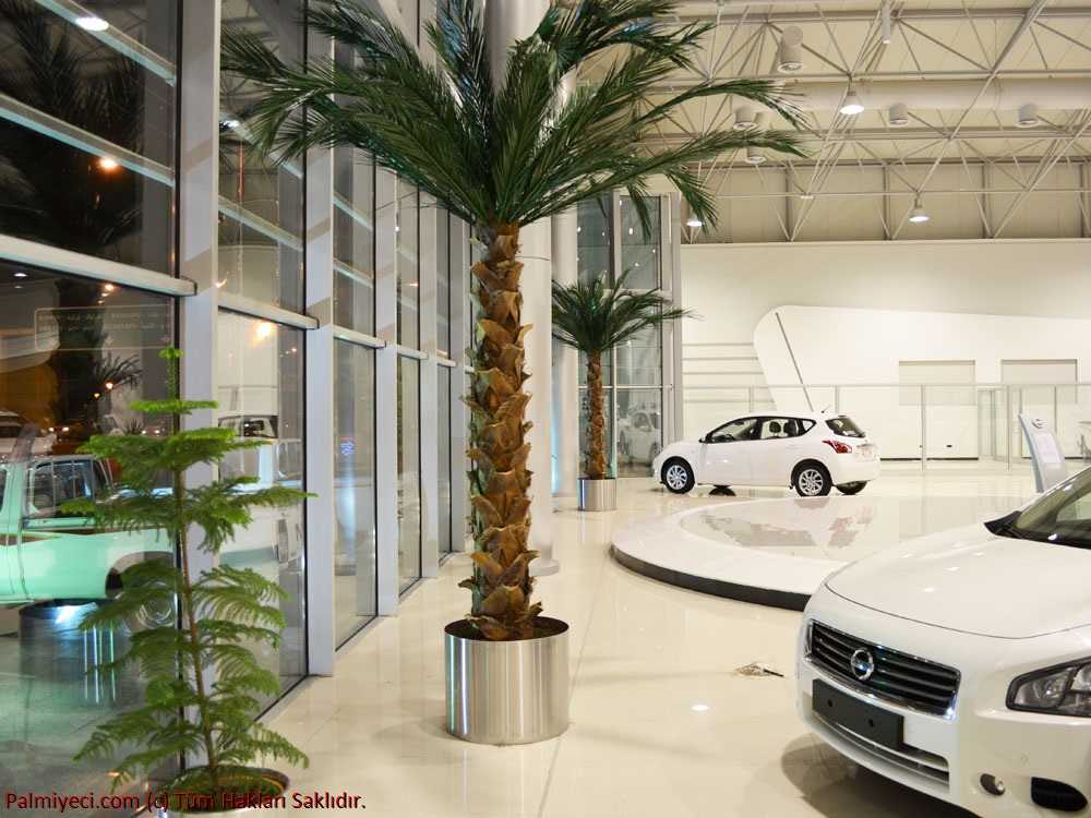 Nissan Automotive Erbil Showroom